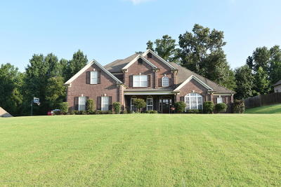 Southaven Single Family Home For Sale: 2499 College