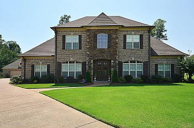 Desoto County Single Family Home For Sale: 5033 Cardigan Drive