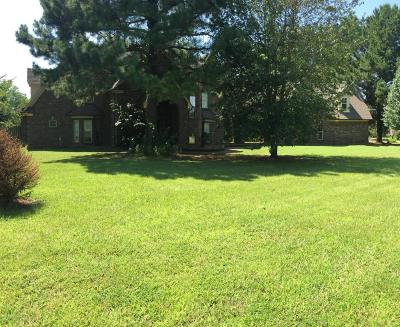 Desoto County Single Family Home For Sale: 7307 Elizabeth