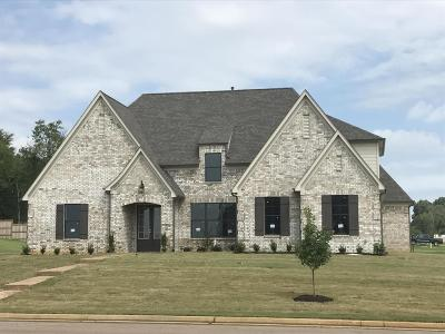 Desoto County Single Family Home For Sale: 14438 Choctaw Ridge Drive Drive