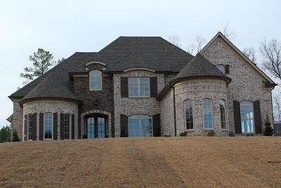 Desoto County Single Family Home For Sale: 10557 S Long Bridge Road