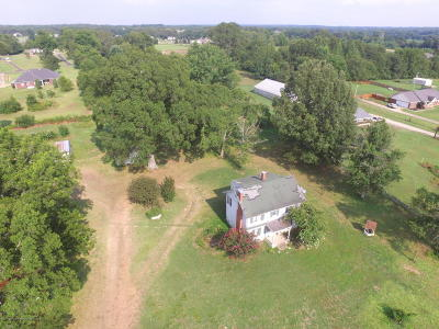 Marshall County Single Family Home For Sale: 1905 Highway 309 S