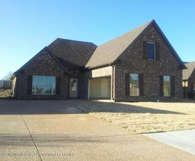 Horn Lake Single Family Home For Sale: 4683 Spike Lane