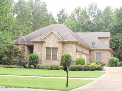 Olive Branch Single Family Home For Sale: 6259 East Creekside Drive