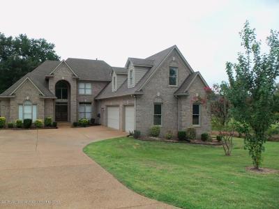 Desoto County Single Family Home For Sale: 3023 Bridgemoore Drive