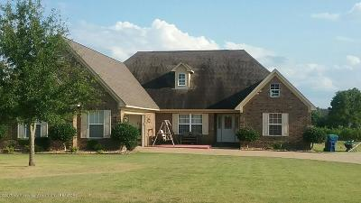 Holly Springs Single Family Home For Sale: 370 Cold Water