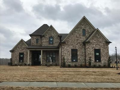 Olive Branch Single Family Home For Sale: 6338 Chippewa Drive