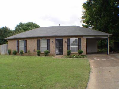 Southaven Single Family Home For Sale: 7769 Auburn Cove