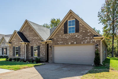 Southaven Single Family Home For Sale: 1253 Hemlock Drive