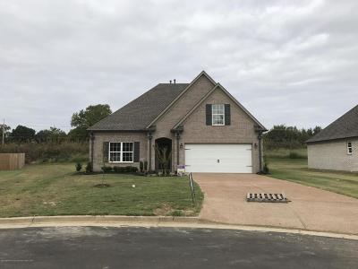 Southaven Single Family Home For Sale: 5145 Ashdown Place Cove South