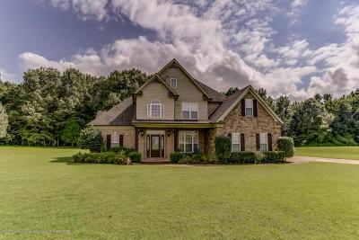 Byhalia Single Family Home For Sale: 330 Myra Road