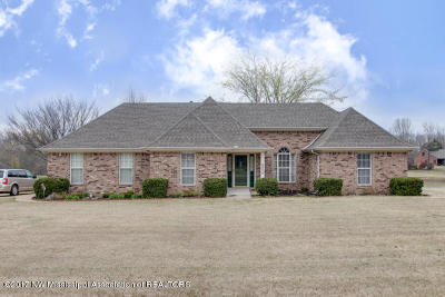 Horn Lake Single Family Home For Sale: 2050 Wood Hill
