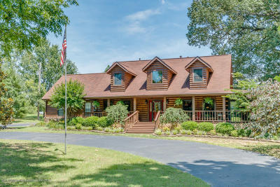 Desoto County Single Family Home For Sale: 9100 Willow Branch Drive