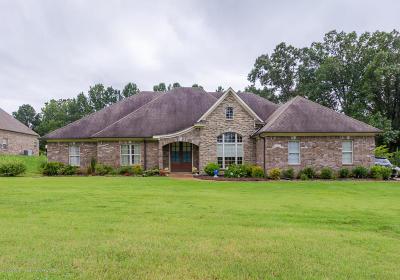 Desoto County Single Family Home For Sale: 3077 Bridgemoore Drive
