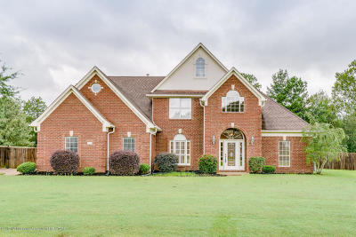 Desoto County Single Family Home For Sale: 3187 Marcia Louise Drive