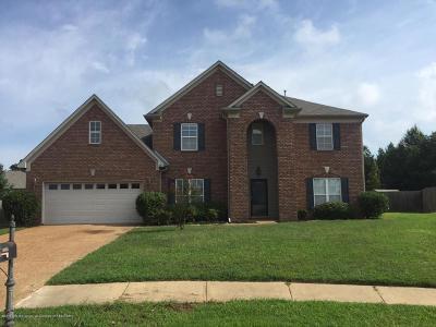 Desoto County Single Family Home For Sale: 10644 Cali
