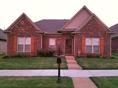 Desoto County Single Family Home For Sale: 3079 Logans Loop
