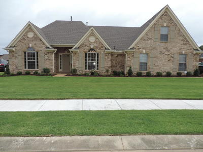 Desoto County Single Family Home For Sale: 4580 Sweet Flag Loop