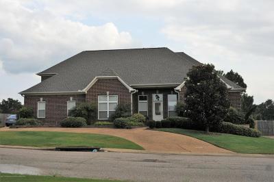 Olive Branch Single Family Home For Sale: 12853 Myrtle Bend Loop