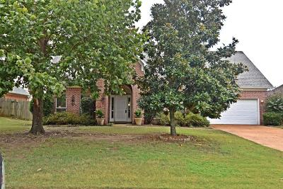 Desoto County Single Family Home For Sale: 13091 Sandbourne