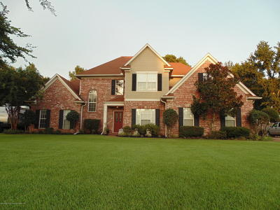 Desoto County Single Family Home For Sale: 2202 Westwind Drive