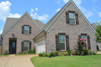 Olive Branch MS Single Family Home For Sale: $206,000