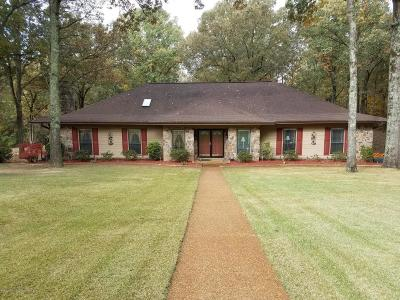 Olive Branch Single Family Home For Sale: 4621 Homestead Lane