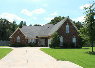 Southaven Single Family Home For Sale: 2399 Tower