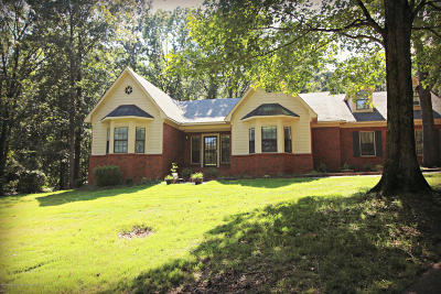 Olive Branch Single Family Home For Sale: 5375 Polk Lane