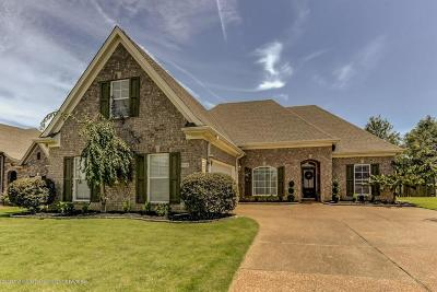 Southaven Single Family Home For Sale: 3310 Mountain Ash Drive