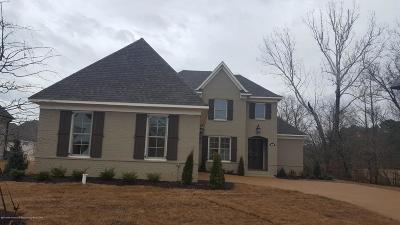 Olive Branch Single Family Home For Sale: 4140 Lundy Bend