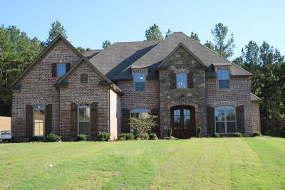 Olive Branch Single Family Home For Sale: 10451 Low Bridge Road