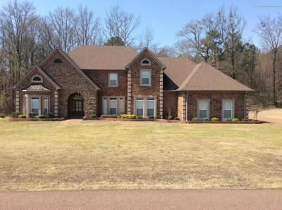 Olive Branch Single Family Home For Sale: 3875 Woodcrest Drive