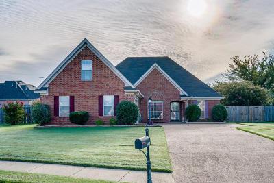 Horn Lake Single Family Home For Sale: 4860 Trolley Lane