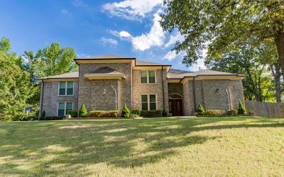 Desoto County Single Family Home For Sale: 5699 Austin Road