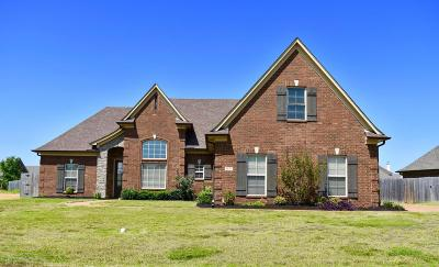 Southaven Single Family Home For Sale: 5537 E Pinetree Loop