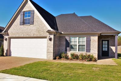 Southaven Single Family Home For Sale: 2628 Molly Lane