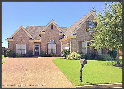 Southaven Single Family Home Active/Contingent: 2651 Hill Valley