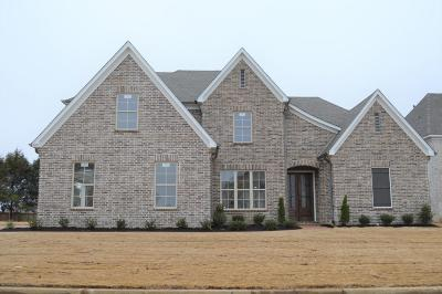 Southaven Single Family Home For Sale: 3689 Beech Tree Cove