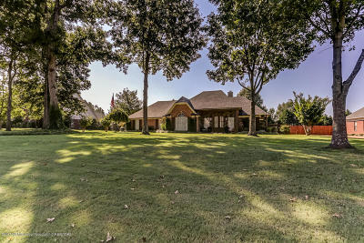 Southaven Single Family Home For Sale: 2685 Dickens Place Drive