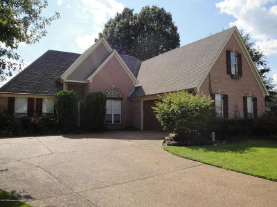 Olive Branch Single Family Home For Sale: 6045 S Shadow Oaks Cove
