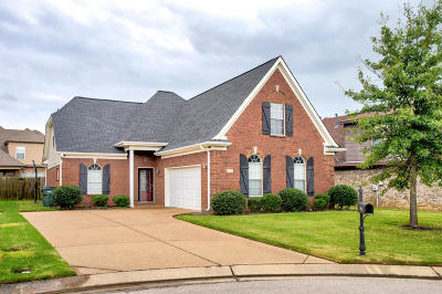 Southaven Single Family Home For Sale: 2963 Dawkins Cove