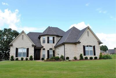 Southaven Single Family Home For Sale: 1246 Walker Cove