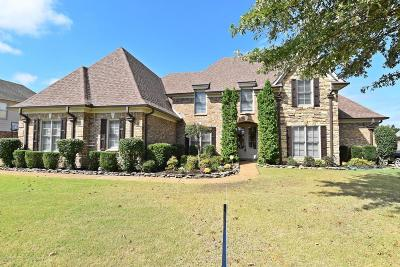 Southaven Single Family Home For Sale: 3837 Old Orchard Place