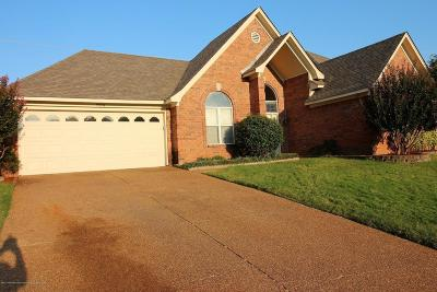 Olive Branch Single Family Home For Sale: 9304 Lacee