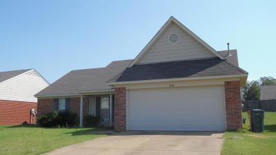 Southaven Single Family Home For Sale: 8190 Martin Drive