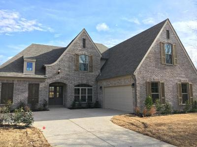 Olive Branch Single Family Home For Sale: 4012 Carolyn Mitchell Drive