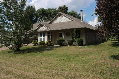 Olive Branch Single Family Home For Sale: 10100 Palmer Drive