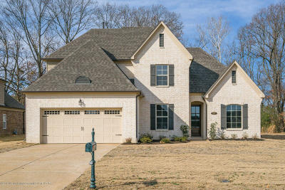 Southaven Single Family Home For Sale: 5191 Forest Bend Cove