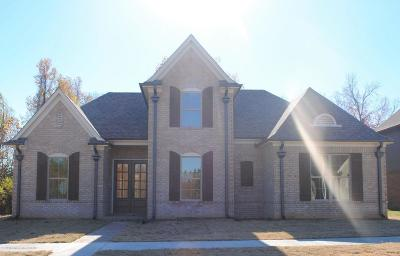 Olive Branch Single Family Home For Sale: 5356 Stonecrest Drive